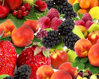 Organic Fruit Oils Cold Pressed,apple,cherry,guava,mango,papaya,plum,peach,passion fruit,blueberry,apricot,fig,watermelon,kiwi,pomegranate