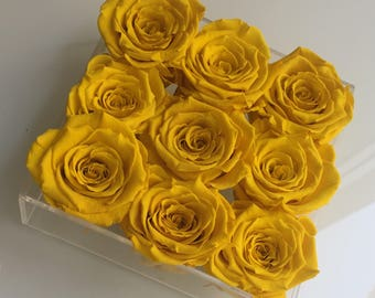 9 Eternity Roses in a Lucite Tray
