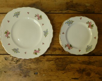 Fine Bone China Floral Cake Plate and Set of 6 Side Plates