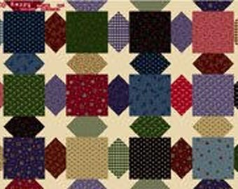Exclusively Quilters Scrap Happy 4107EQ-60955-95         -- 1/2 yard increments