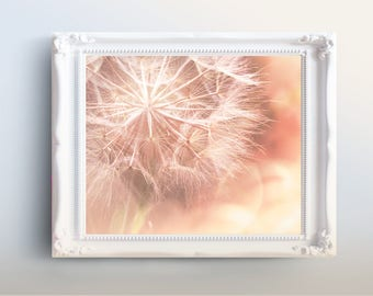 Printable Nature Photography, Pink Dandelion, Nature Photography, Flower Photography Printables -art photo print, gift for her, gift for mom