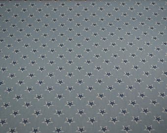 English Clarke and Clarke Shooting stars chambray fabric