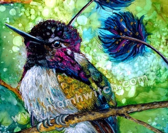 Hummingbird - Original Painting of a Spatuletail Hummingbird - *DONATION made with purchase*