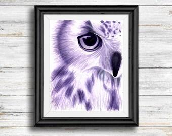 Purple Owl - Digital Download