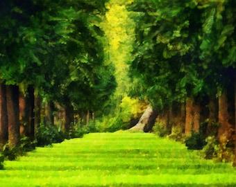 Custom Painting from photo, Digital Fine Art, your photo to canvas, Digital Painting from your photo, Free Shipping!