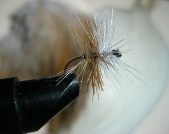 Bi-visible, trout