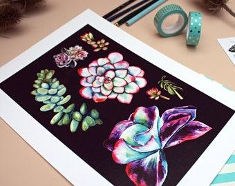 Set of Succulents - A4 Print