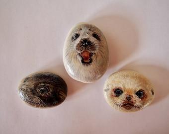 Set of 3 Seal Rocks
