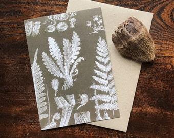 Vintage Natural History Fern & Forest Art Print, Botanical Illustration, Natural Science Rustic Home Decor, Gardener Gift, Greeting Card.
