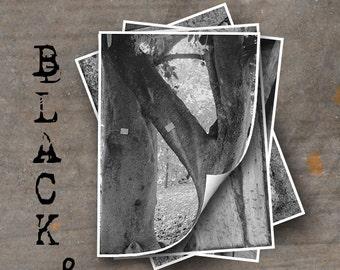 LETTER N Alphabet Photography LETTERS - Black and White Alphabet Photos