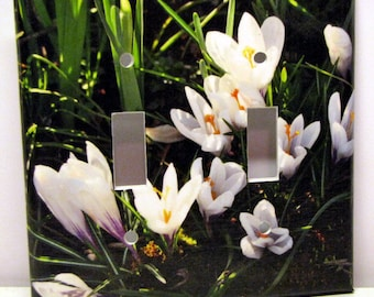 Morning Crocuses -- Recycled Double Light Switch Plate, Cover, Photography, Spring, Flower, White, Bulbs, Nature,  Garden