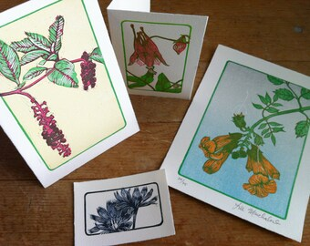 WILDFLOWER ART PRINTS, 4 letterpress prints, flower art print, columbine art print, trumpet vine art, gifts for gardeners, botanical print