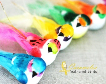 Set of 6 Brightly colored mushroom feathered birds