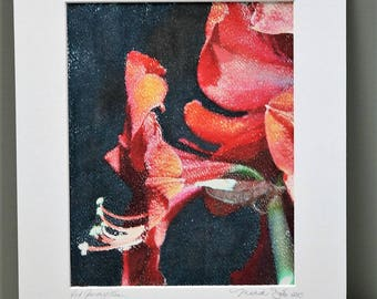Red Amaryllis, Photo Transfer onto Watercolor Paper, One of a Kind