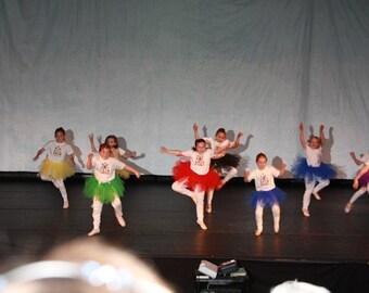 Group  tutu skirt, Marathon, Pageant, skirt , custom order yours