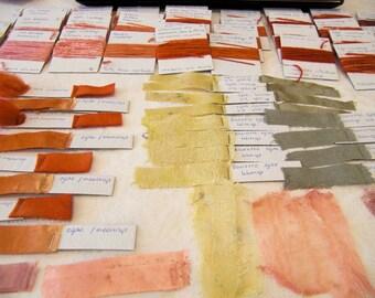 Workshop in Eco Textile Studio plantaardig verven op wol en zijde