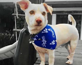 Los Angeles Dodgers Dog Bandana
