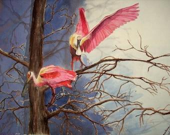Spoonbills- Wall art