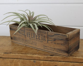 Vintage Wooden Velveeta Display Box, Small Little, Aged Worn Weathered, Wood Storage & Display, Awesome Old Wood, No Lid, Rectangle Crate