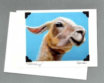 Llama Card - Funny Animal Card - Postcard Greeting Card Combination - Bright Animal Art - Proceeds Benefit Animal Charity