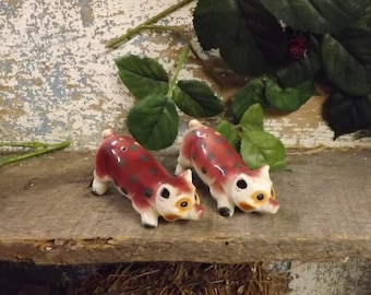 These are Pig Salt & Pepper Shakers.