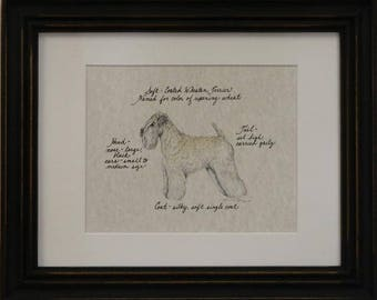 Soft Coated Wheaten Terrier Hand Colored Print. Signed by the Artist.  Art Paper. Acid Free Mat. Glass Front. Hardwood Frame. Made in USA.