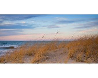 art print, wall decor, beach photography, home decor, fine art, beach pictures, beach decor, coastal, sea oats, sunset, large art, seascape