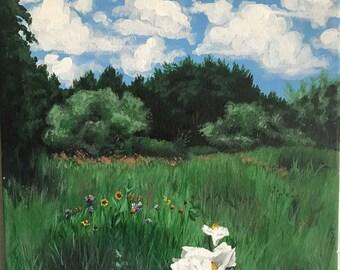 Texas Wildflowers Painting