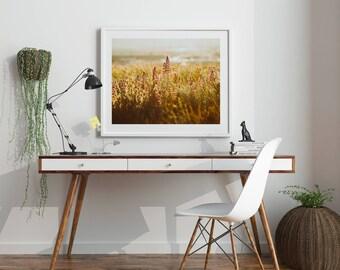 "Nature Print, Flower Print, Flower Art, Botanical Art, Instant Download, Printable Art, Flower Art Print, Nature Photography ""LUPINE DAZE 2"""