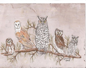 6 Bird Note Cards - Blank Interiors