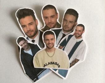 Liam Payne Cute Sticker Pack (24ct)