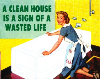 """Magnet, """"A clean house is a sign of a wasted life"""""""