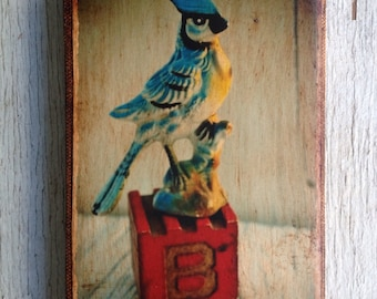Vintage Toy  B is for Blue Jay Art/Photo - Wall Art 4x6