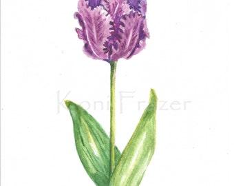Tulip watercolor painting / ten most interesting flower series / Original watercolor / flower painting 5 x 7