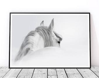 Black and White Horse Print, Horse Wall Art, Horse Photography, Animal Art, Horse Art Print, Gift for Horse Lover, Horse Decor