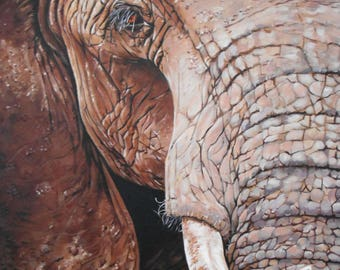 Elephant Print - Mounted