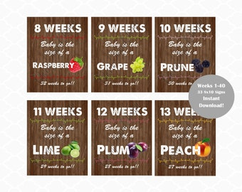 Printable Weekly  Pregnancy Rustic Signs. Baby Bump photo props.  8x10 Weekly Pregnancy Fruit signs. Baby size pregnancy signs.