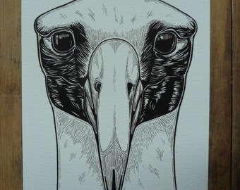Albatross 5 x 8 giclee art print, A5 print, albatross illustration, bird print, black and white illustration, wall art, bird art, nature art