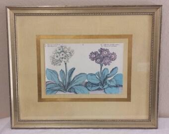 Rare Crispin de Passe Auricola framed by Soicher- Marin Fine Art