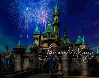 Disney fireworks over Sleeping Beautys castle-Limited Edition