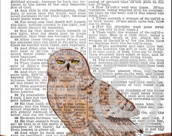 OWL Art Print©   4x6 or 5x7 or 8x10 BIBLE Page S John 4 Necessity of Regeneration  Owl bird INSTANT Digital Download