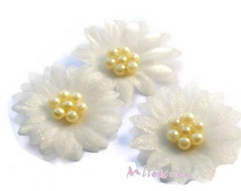 Set of 5 flowers cream organza fabric, beads, scrapbooking, card (ref.310) *.