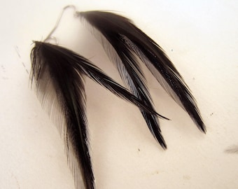 Black Feather Earrings thin