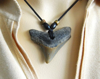 Fossil Carcharodon MEGALODON Shark tooth - PENDANT - WOWWWW !!