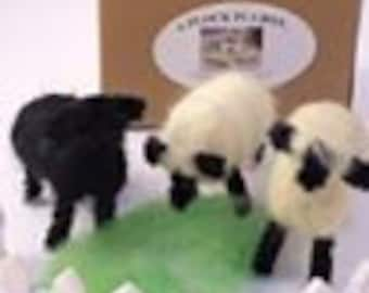 """Needle Felt Sheep and Lambs """"A Flock In A Box""""tm EWE-nique Gift"""