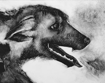 Whimsical dog art Black and white original monotype Reluctant Thief