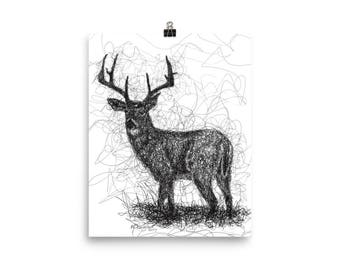 Whitetail Deer Pen & Ink Print Poster