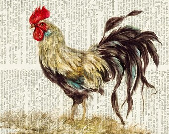 rooster painting print