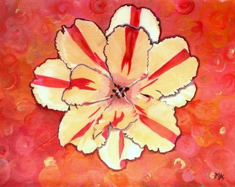 Parrot Tulip Blossom Painted Photograph Print
