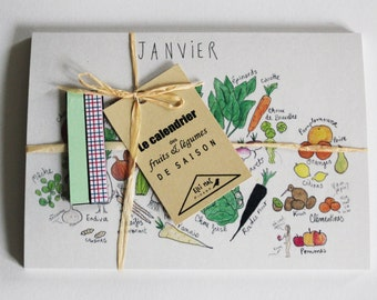 The fruits and vegetables calendar & the 4 magnets - set of 12 comic postcards (ink - watercolor pencil)